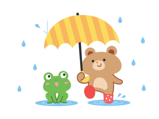 雨傘 人気 レディース 女性用,